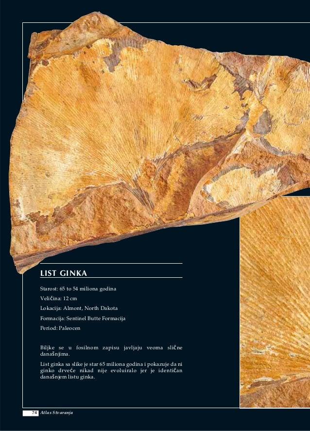 što se podrazumijeva pod fosilnim datiranjem