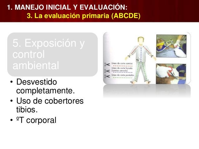 1. MANEJO INICIAL Y EVALUACIÓN: 7. Auxiliares de la evaluación secundaria Radiografías adicionales. TC. Urografía con m...