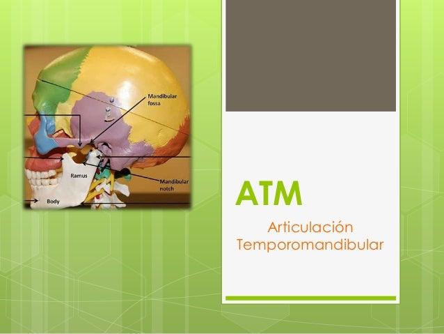 ATM Articulación Temporomandibular