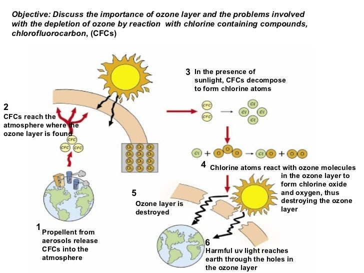 the importance of the ozone layer Why is the ozone layer important for life on earth essay and speech on the  importance of ozone layer for life and how to protect it.