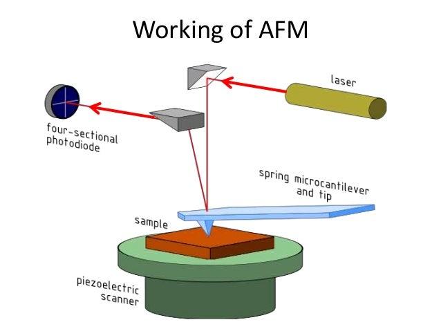 atomic force microscope  fundamental principles