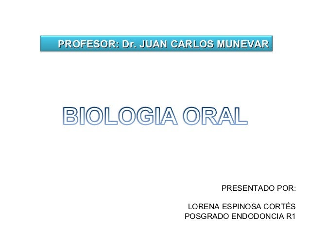 PROFESOR: Dr. JUAN CARLOS MUNEVAR                          PRESENTADO POR:                    LORENA ESPINOSA CORTÉS      ...