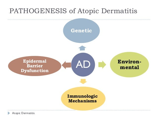 ATOPIC DERMATITIS PATHOGENESIS PDF DOWNLOAD