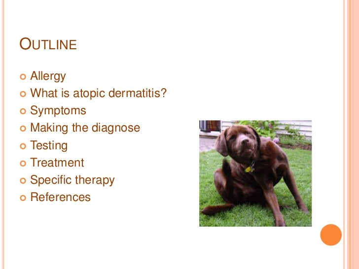 Atopic dermatitis in the dog Slide 2
