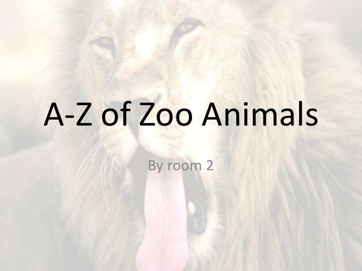A-Z of Zoo Animals<br />By room 2 <br />