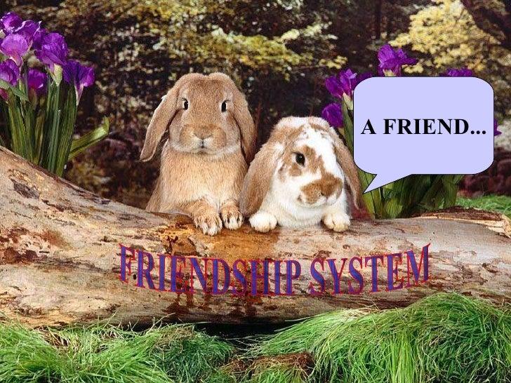 FRIENDSHIP SYSTEM A FRIEND...