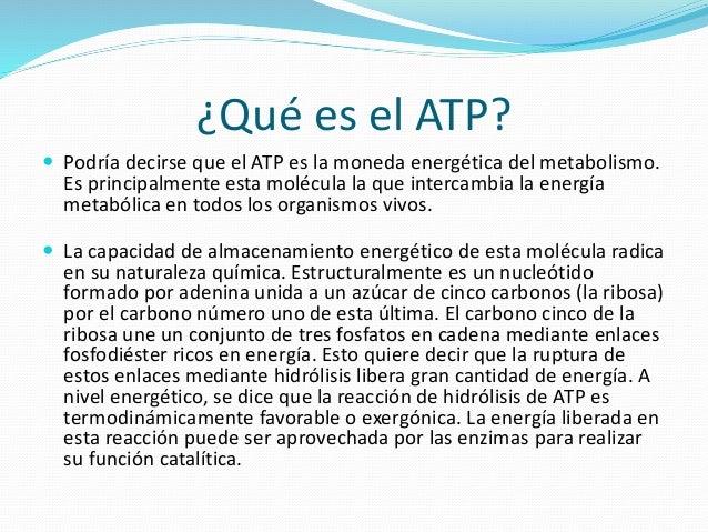 Atp y su funci n en los seres vivos for Que significa molecula