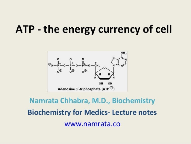 ATP - the energy currency of cell Namrata Chhabra, M.D., Biochemistry Biochemistry for Medics- Lecture notes www.namrata.co