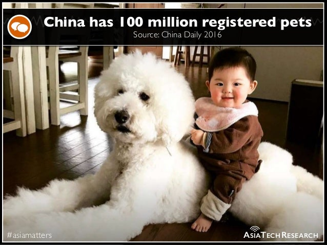 Source: China Daily 2016 #asiamatters China has 100 million registered pets ASIATECHRESEARCH