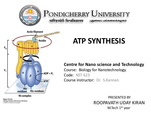 ATP SYNTHESIS Centre for Nano science and Technology Course: Biology for Nanotechnology. Code: NST 623 Course instructor: ...