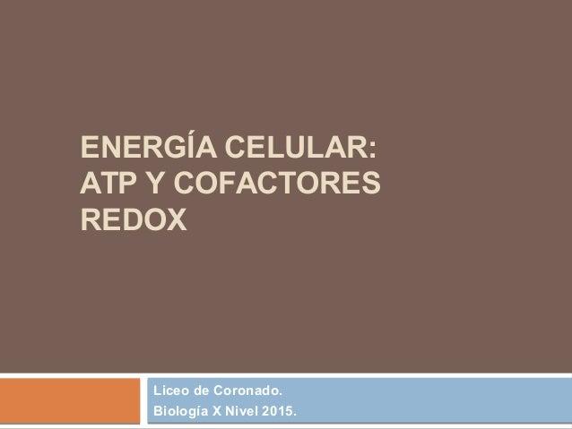 ENERGÍA CELULAR: ATP Y COFACTORES REDOX Liceo de Coronado. Biología X Nivel 2015.