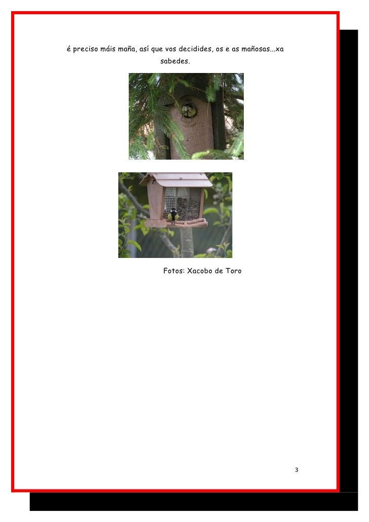 Atraer fauna ao noso entorno. caixa niño. Slide 3