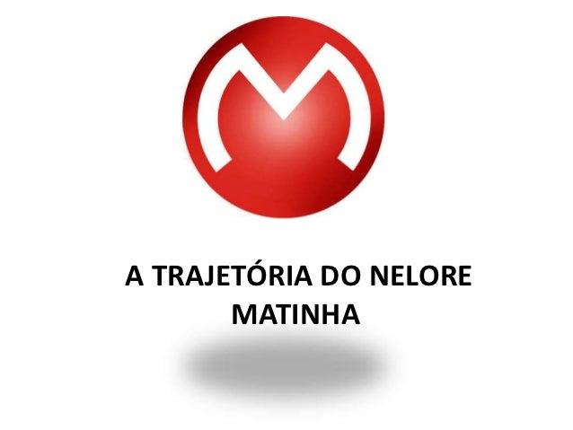 A TRAJETÓRIA DO NELORE       MATINHA