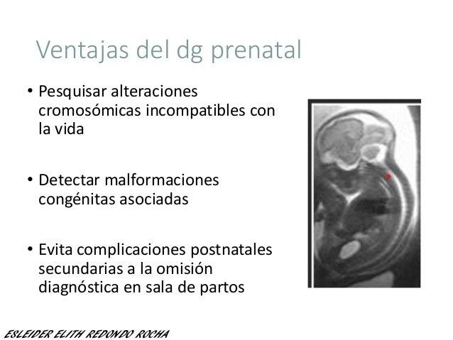 Ventajas del dg prenatal • Pesquisar alteraciones cromosómicas incompatibles con la vida • Detectar malformaciones congéni...