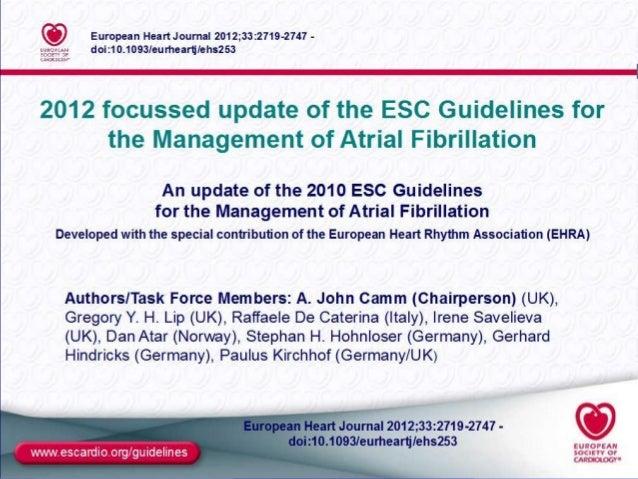 Atrial fibrillation guidelines in 2014. samir rafla Slide 3