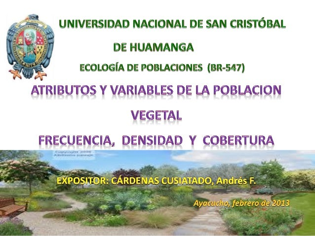 IMPORTANCIA DE LA FLORA Y LA VEGETACIÓN  BOSQUES  PRADERAS O PASTIZALES  MATORRALES  ÁRBOLES Y PLANTAS EN LAS CIUDADES
