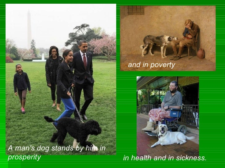 A man's dog stands by him in prosperity and in poverty in health and in sickness.