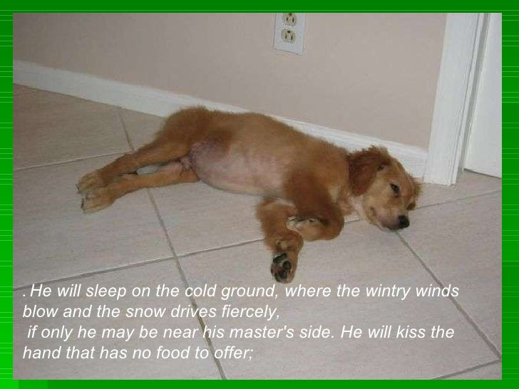 .  He will sleep on the cold ground, where the wintry winds blow and the snow drives fiercely, if only he may be near his ...