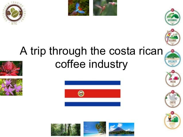 A trip through the costa rican coffee industry