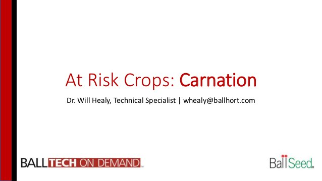 At Risk Crops: Carnation Dr. Will Healy, Technical Specialist   whealy@ballhort.com