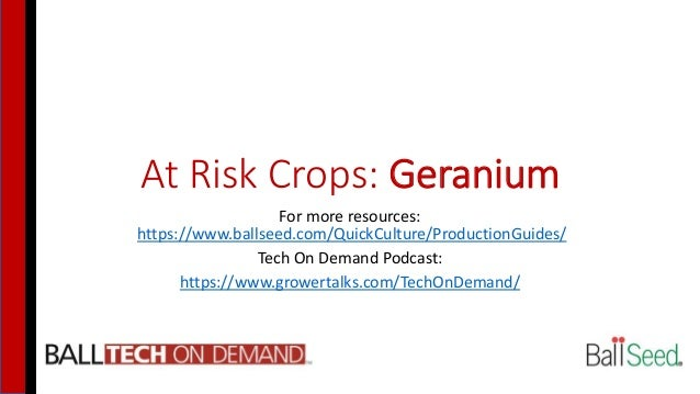 At Risk Crops: Geranium For more resources: https://www.ballseed.com/QuickCulture/ProductionGuides/ Tech On Demand Podcast...