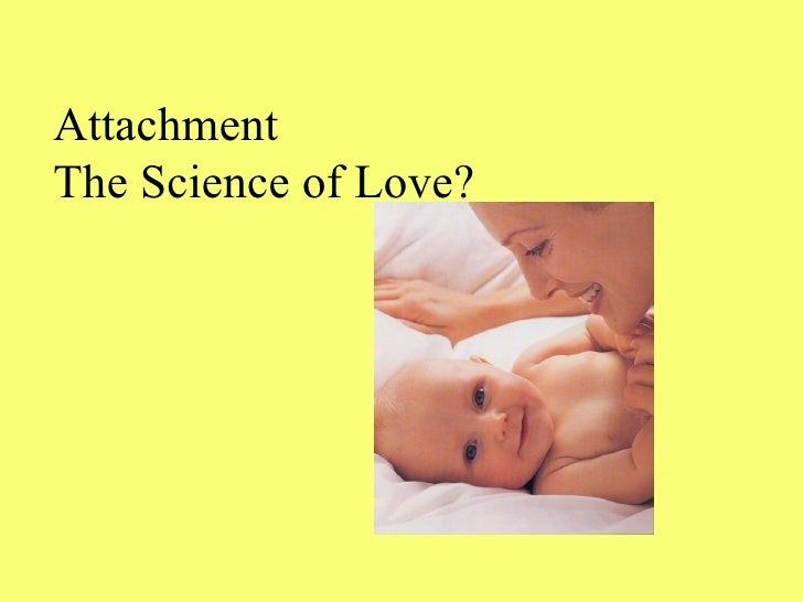 Attachment The Science of Love?