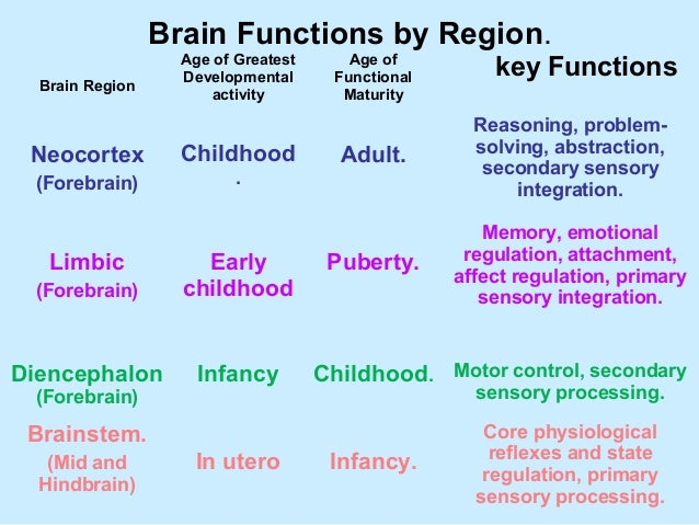 Emotional Regulation Is Influenced By Maturation Learning And
