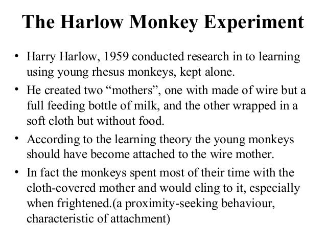 similarities between harlow and ainsworth Choo-choo monkeys (courtesy of harlow primate laboratory, university of   from the ideas of john bowlby and mary ainsworth as well as from konrad  for  the opportunity to meet lorenz and discuss the similarities and.