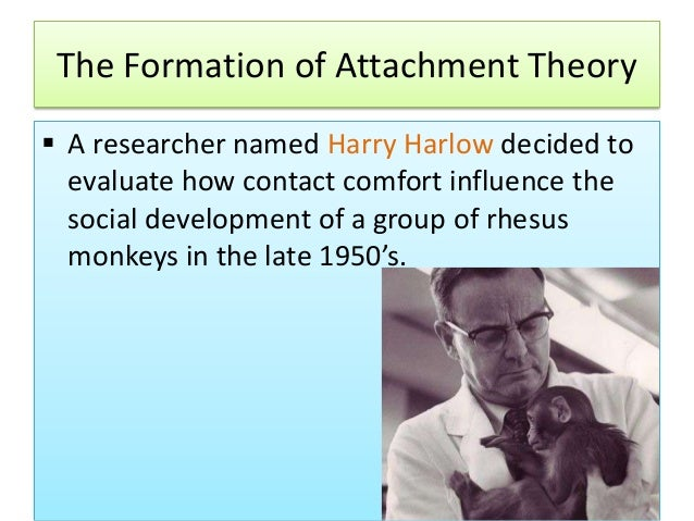 cupboard love theory harlow Strength: provide an explanation of how attachments are formed there does seem to be some suggestion that babies do indeed learn to become more attached to their mother thanks to cupboard love, but found in harlow's study that the monkeys were more attached to cloth covered monkey than the one that dispensed food showing that food.