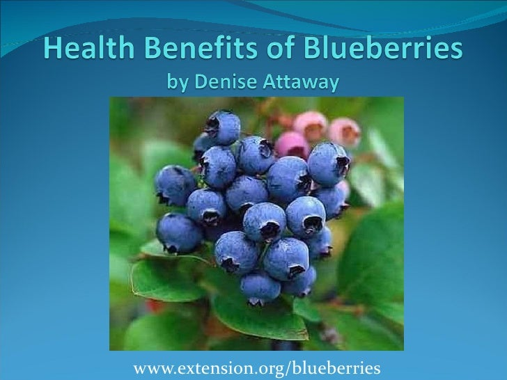 www.extension.org/blueberries