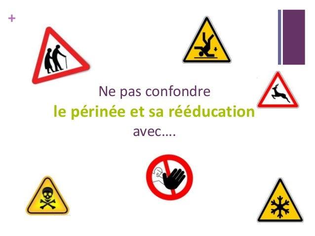 + Ne pas confondre le périnée et sa rééducation avec….