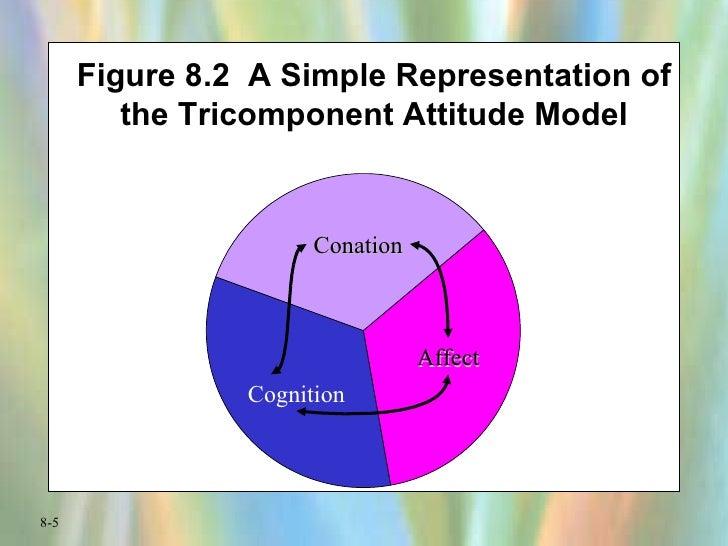 Figure 8.2  A Simple Representation of the Tricomponent Attitude Model Conation Affect Cognition