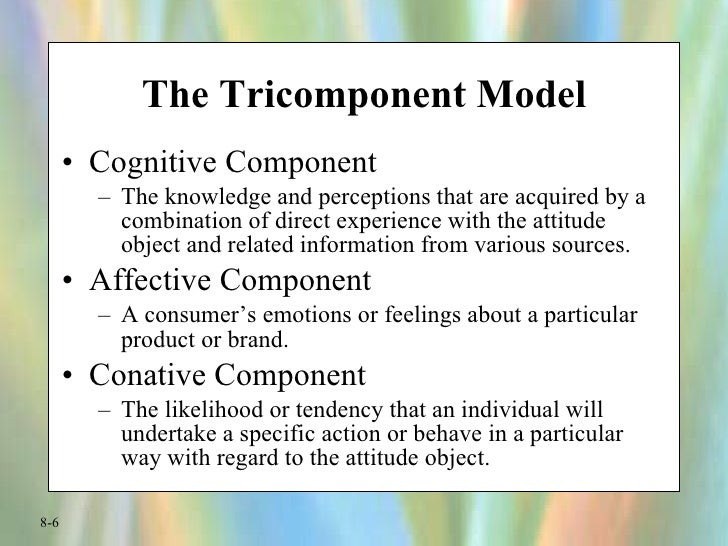 i the conceptual model tricomponent attitude The concept of attitude in consumer behavior can be explained in terms of   according to the tricomponent attitude model, attitude consists of.