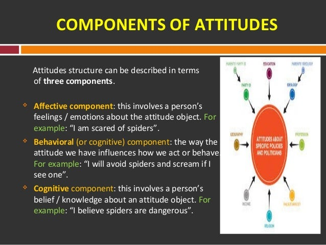 attitude formation affect and cognition In cognitive psychology and neuroscience support the rad- ically different view that affect is a useful and even essen- tial component of adaptive social thinking (adolphs .