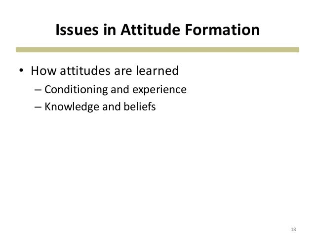 Issues in Attitude Formation • How attitudes are learned – Conditioning and experience – Knowledge and beliefs 18