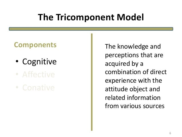 The Tricomponent Model • Cognitive • Affective • Conative The knowledge and perceptions that are acquired by a combination...