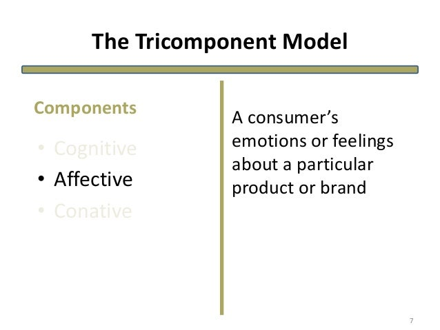 The Tricomponent Model • Cognitive • Affective • Conative A consumer's emotions or feelings about a particular product or ...