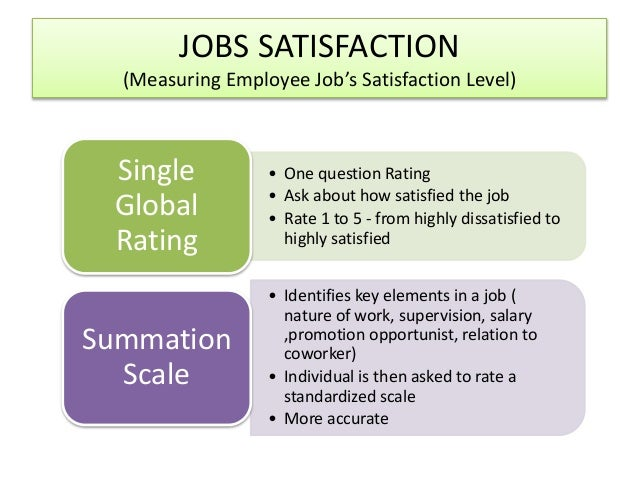 the nature and causes of job satisfaction locke 1976 pdf