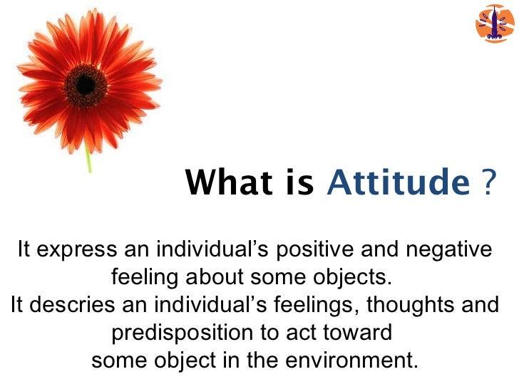 An Attitude of Gratitude Campaigner