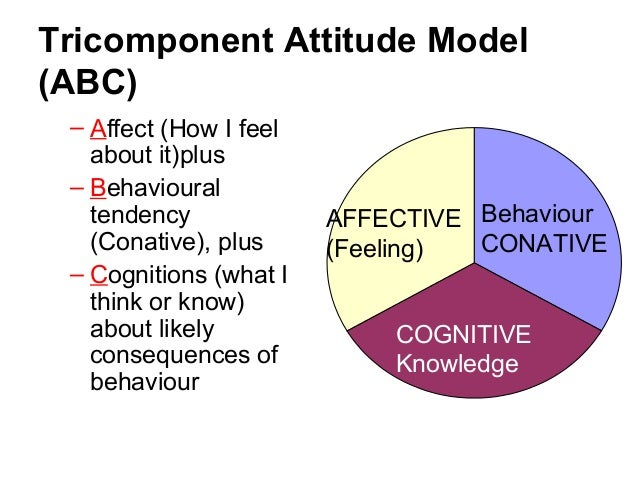 i the conceptual model tricomponent attitude The tricomponent attitude model states that attitudes are composed of three components, viz, a knowledge (cognitive) component, feeling and emotional (affect.