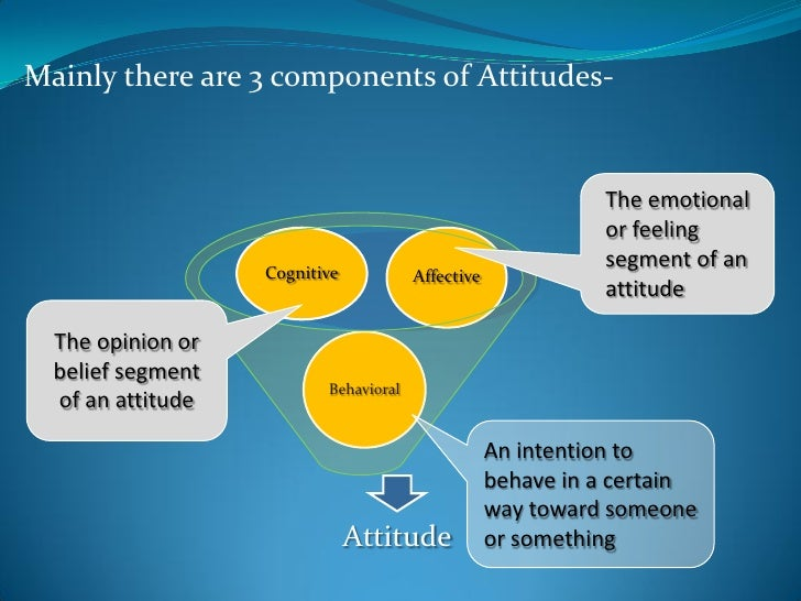 attitude and its components It tries to show some illumination on the concept of attitudes, its functions, its measurements, its components, the modification of its components, its strategic marketing implications a good grasp of these will most likely enable businesses design far-reaching rent-yielding strategies.