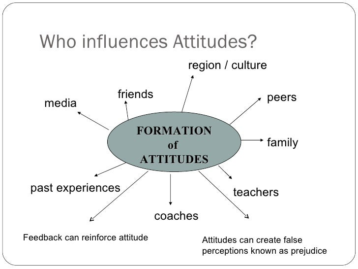 what influences attitude formation pdf