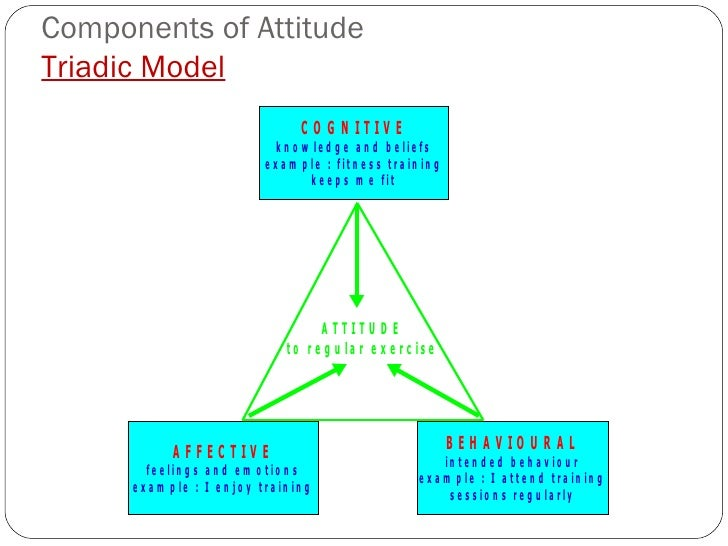 """the definition of self efficacy in banduras social cognitive theory He promoted the concept of what he ultimately termed """"social cognitive  social cognitive theory and of self-efficacy  banduras-social-cognitive-theory/."""