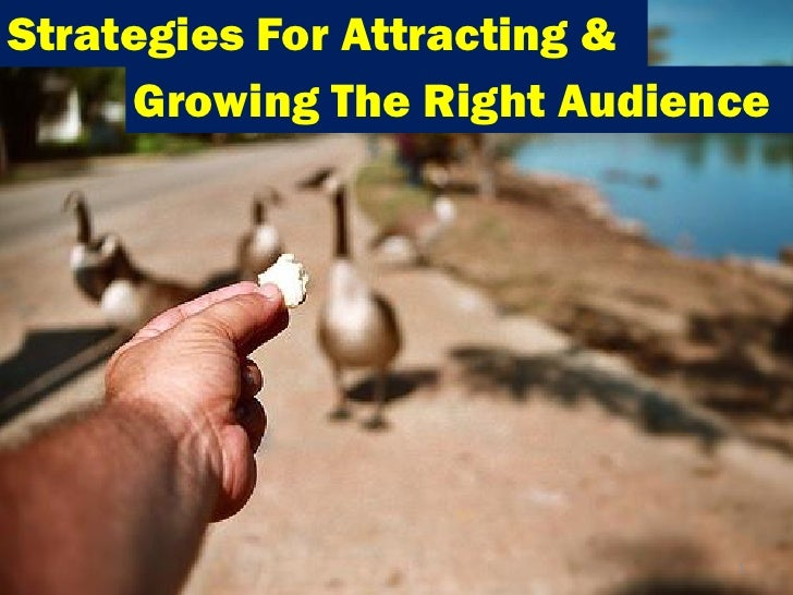 Strategies For Attracting &     Growing The Right Audience                             1