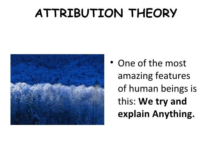 Attribution theory essay