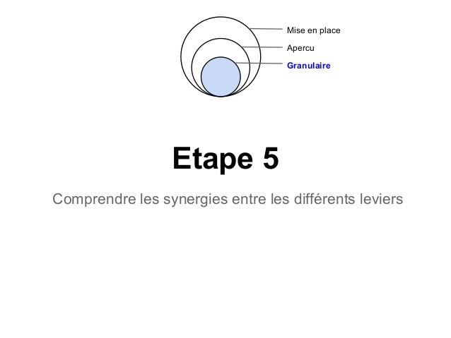 Etape 5Comprendre les synergies entre les différents leviersMise en placeApercuGranulaire