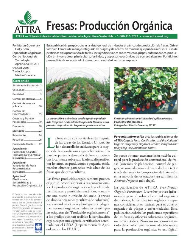 L a fresa es un cultivo viable en la mayoría de las áreas de los Estados Unidos. Se han desarrollado cultivares para la ma...