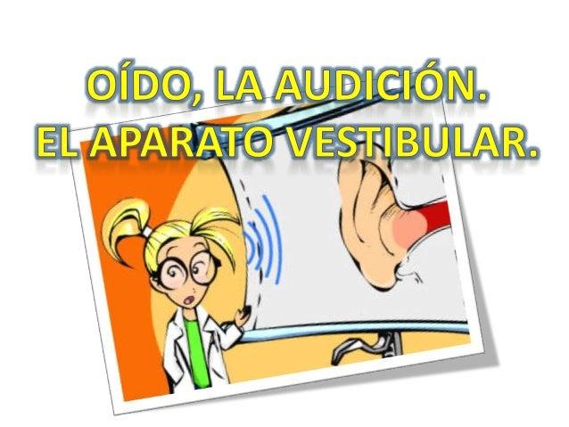 El oído conforma los órganos de equilibrio y audición. También se le denomina órgano vestibulococlear dentro del estudio d...
