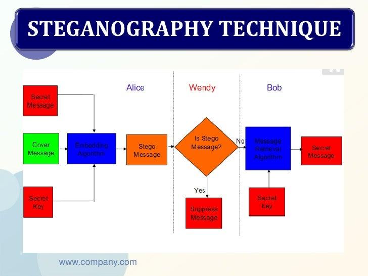 STEGANOGRAPHY TECHNIQUE  www.company.com