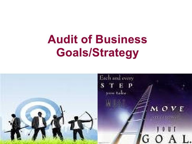 Audit of Business Goals/Strategy